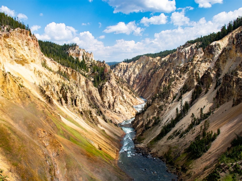 MM Students Take Virtual Visit to Yellowstone